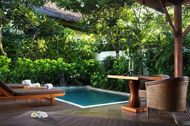 Plunge pool in small court yard house design my dream for Garden mini pool