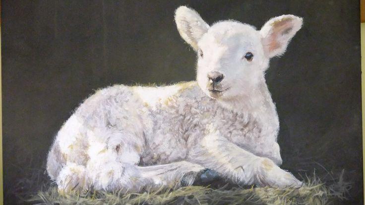 """Study of a Spring Lamb"" By Bridget Askew"