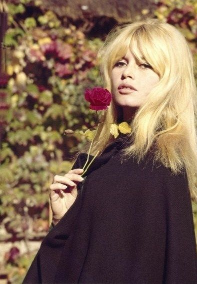 Brigitte Bardot                                                                                                                                                                                 More