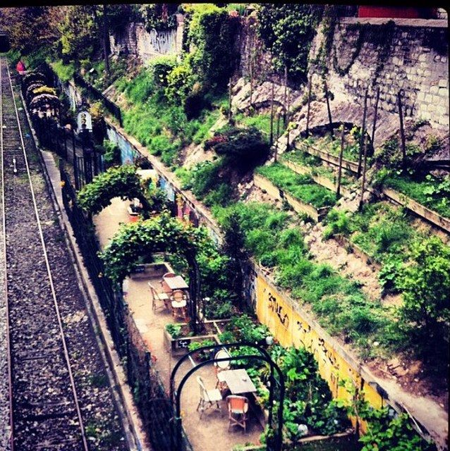 Abandoned Railway station with graffiti art and lush greenery. Perfect for a picnic spot.