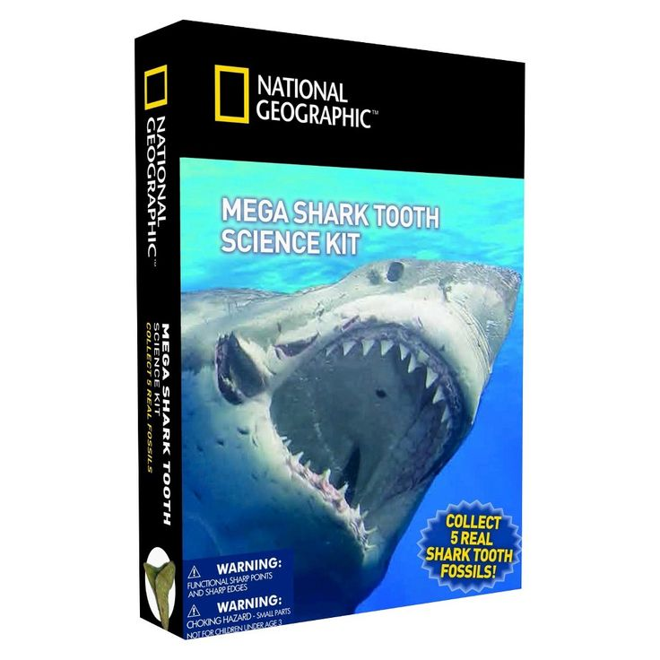 National Geographic Mega Shark Tooth Science Kit
