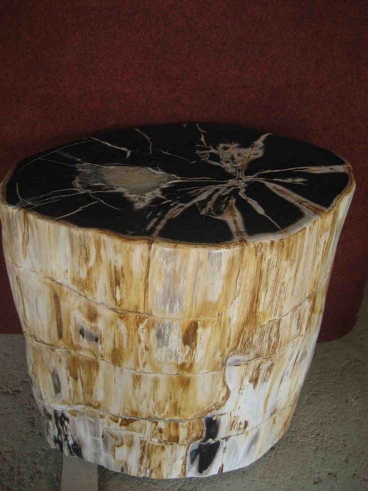 https://flic.kr/s/aHskWwNkBP | Stone Accent Table | Stone Accent Tables made from genuine petrified wood.