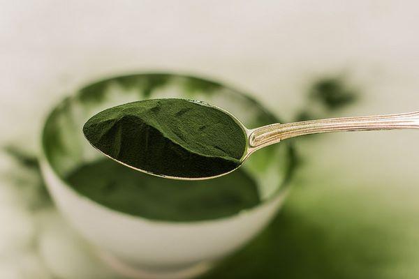 Chlorella: proprietà, usi terapeutici, acquisto dell'integratore alimentare