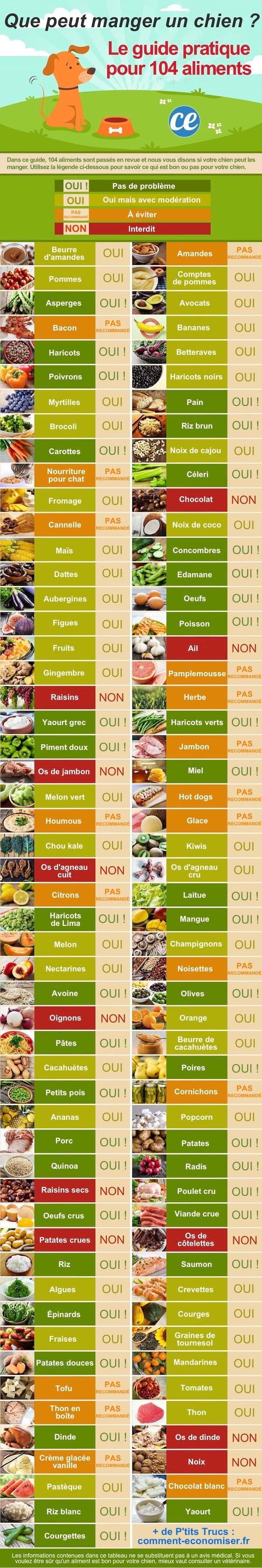 Quels Sont les Aliments Que Peut Manger un Chien ? Le Guide Pratique Pour de 100 Aliments.