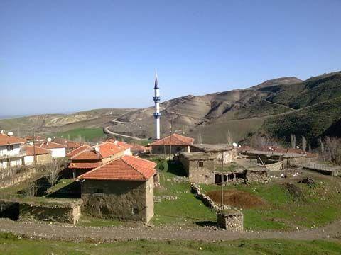 Çamoluk Köyü Videoları, Çorum ilinin Sungurlu ilçesine bağlı bir köydür. köyümüzün önceki adı Cılvar olup 1989 muhtarı Resul Şimşek zamanında'da köyün adı Çamoluk olarak değiştirilmiştir.