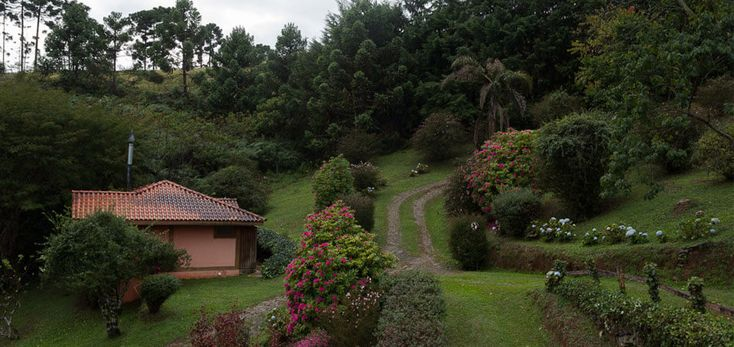 Quer uma dica ótima para curtir as férias ou feriado perto de São Paulo?! Conheça a incrível Pousada Bicho do Mato, em Gonçalves, Minas Gerais.