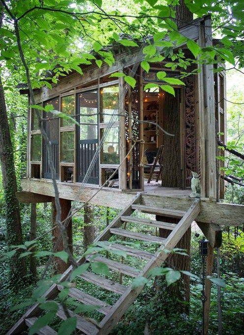 La petite maison (très sophistiquée!), dans les arbres