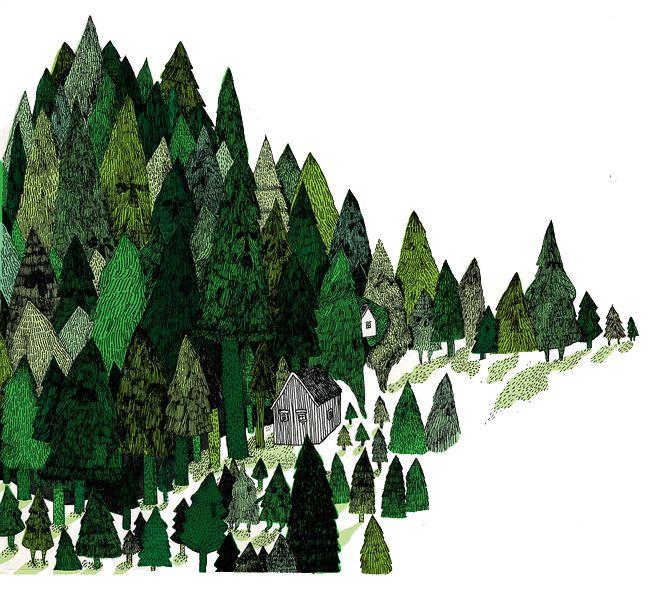 Trær / Skog / Trees / Woods - Åshild Kanstad Johnsen