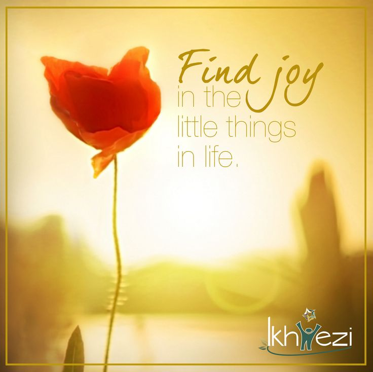 Find joy in the little things in life. #joy #gratitude #life (scheduled via http://www.tailwindapp.com?utm_source=pinterest&utm_medium=twpin&utm_content=post87126135&utm_campaign=scheduler_attribution)
