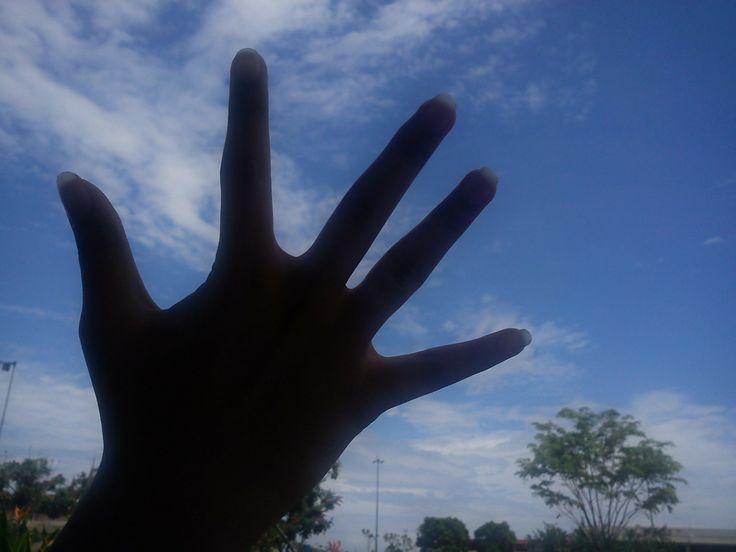 reach the sky is so damn high