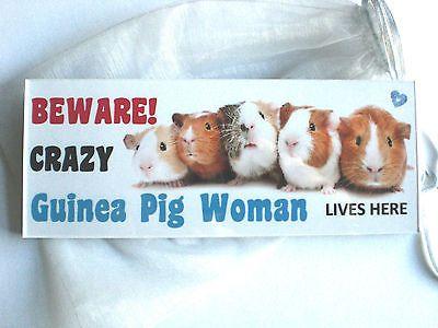 FUNNY BEWARE GUINEA PIG Wood SIGN Plaque hutch cage run door garden gift idea in Home, Furniture & DIY, Pet Supplies | eBay