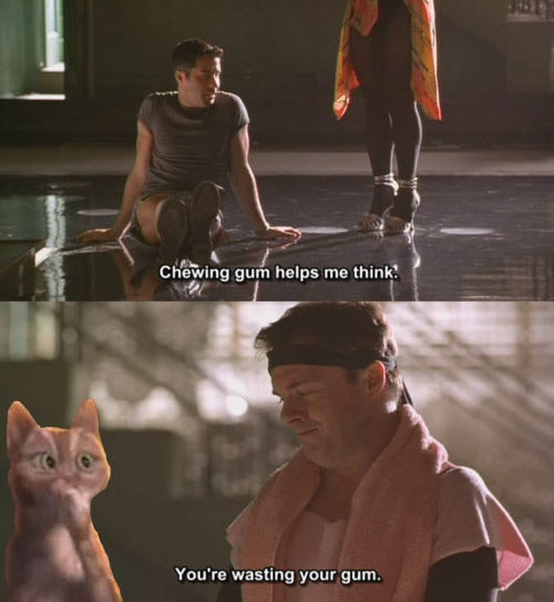 One of my favorite lines from The Birdcage