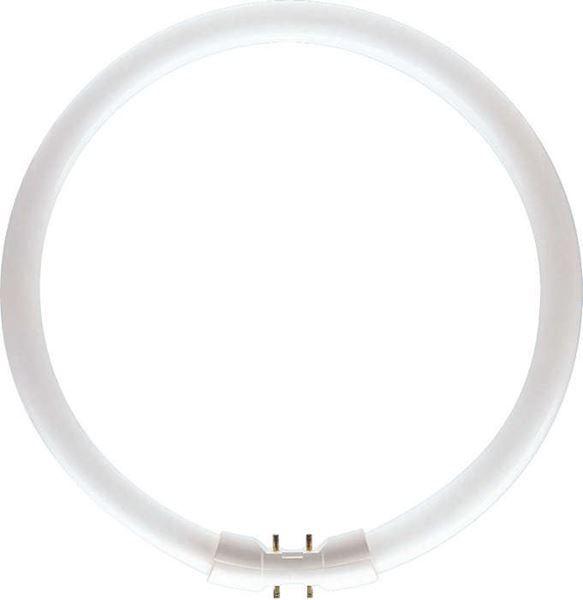 Tub fluorescent circular Philips Master TL5 Circular 22W, 2GX13, 12000 ore, 3000k, lumina calda http://www.etbm.ro/tuburi-fluorescente-circulare