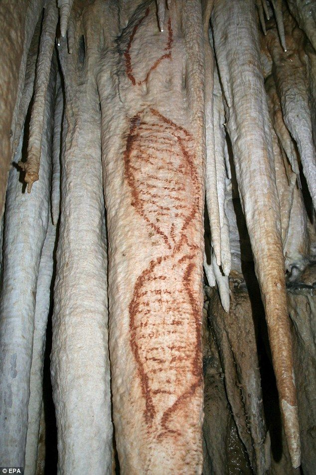 These paintings of seals were discovered in the Nerja Caves near Malaga, Spain. They are at least 42,000 years old and are the only known artistic images created by Neanderthal man.