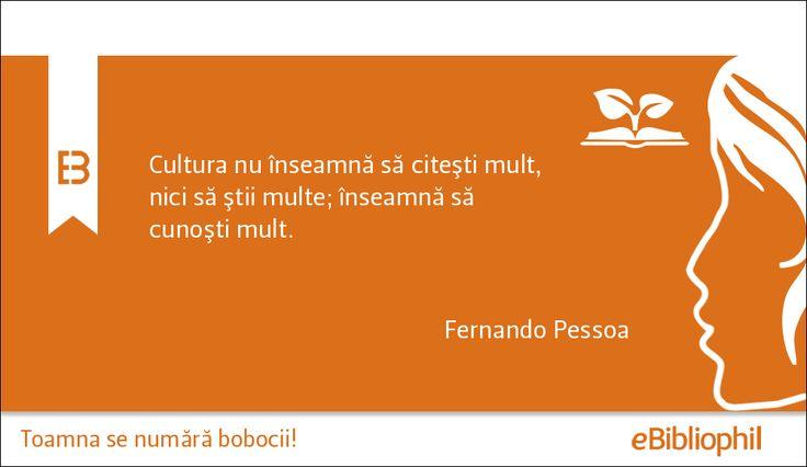 """""""Cultura nu înseamnă să citeşti mult, nici să ştii multe; înseamnă să cunoşti mult."""" Fernando Pessoa"""
