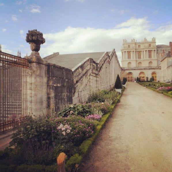 Just down the steps #versailles #garden #steps #french #landscapedesign