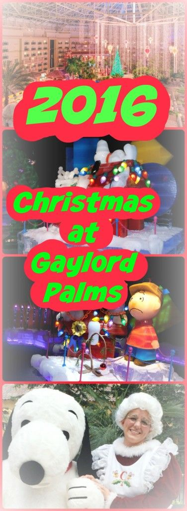 Just outside of Disney World is Gaylord Palms. Their ICE! Christmas show is among teh best in Orlando. 2016 ICE! will feature a Peanuts theme.