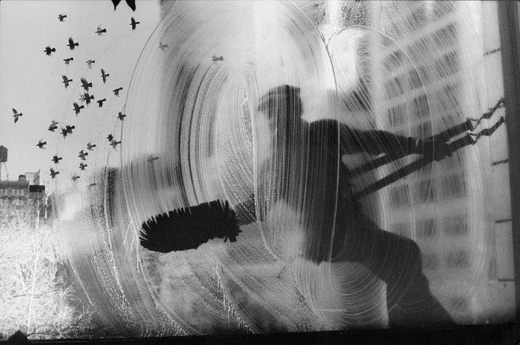 Harold Feinstein Window Washer and Flock of Pigeons. 23rd Street Loft. New York City (1972)