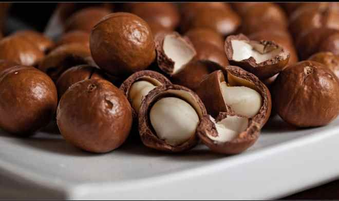 The macadamia nut is an iconic Australian food, indigenous to eastern New South Wales and Queensland.