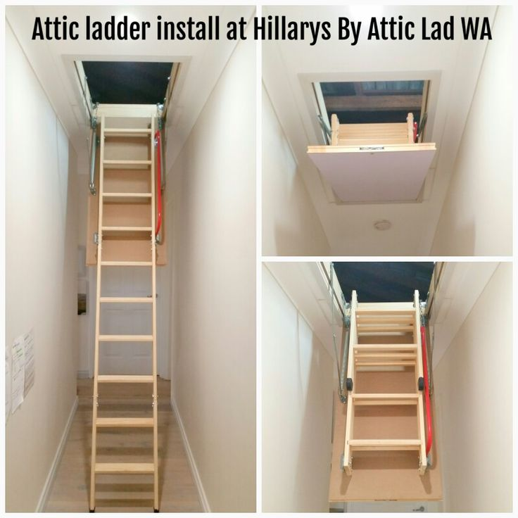 13 Best Wooden Attic Ladders Perth By Attic Lad Wa Images