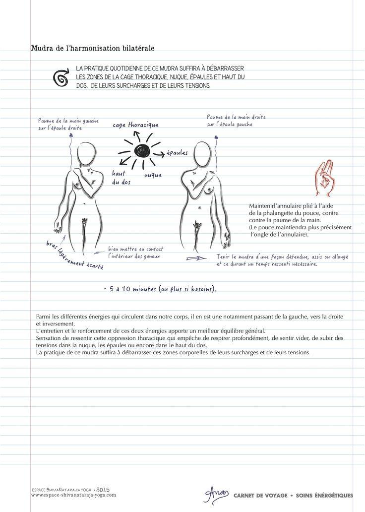 MUDRA DE L'HARMONISATION BILATÉRALE