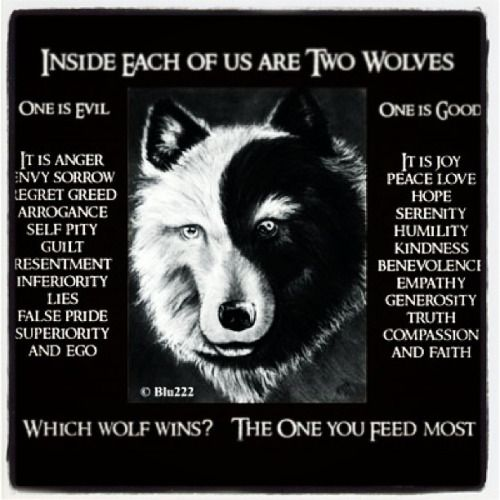 alpha female wolf quotes - Google Search Mais