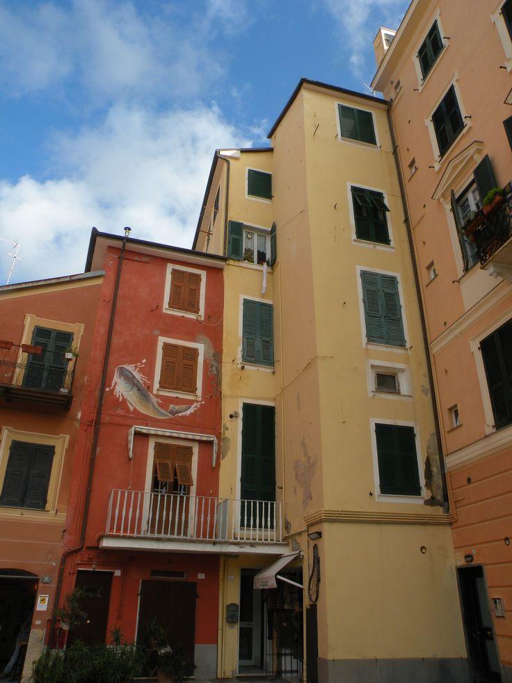 Le case strette e colorate di #Sestri Levante. Avete mai visitato il suo Museo della città a palazzo #Fascie?  http://www.liguriaheritage.it/heritage/it/PassatoEfuturo/Genova.do?contentId=30064&localita=2140&area=210