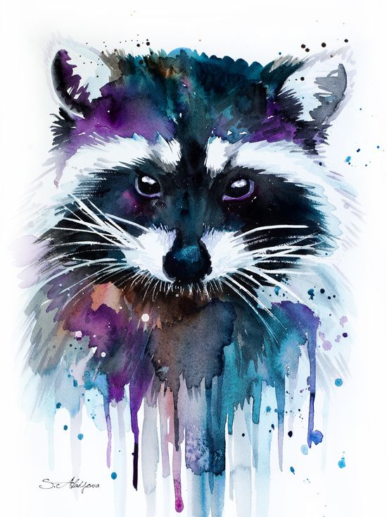Art, watercolour, raccoon, colourful