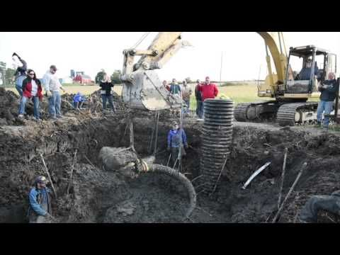 WTF? A Michigan farmer just dug up woolly mammoth bones with his tractor