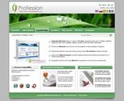 Profession-Green Skin // SEO Menu // W3C Xhtml