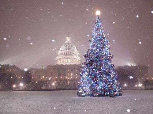 Winter Holidays in Washington DC National Mall Washington DC  Dreaming of a white Christmas or just an affordable end of year get away? Washington, DC offers visitors more than just museums and monuments, but at this time of year, ice skating, snowball fights and shorter lines to all the sites. Book your next stay at the Holiday Inn Washington DC - Central / White House where Kids Eat and Stay Free®!  Http://inndc.com