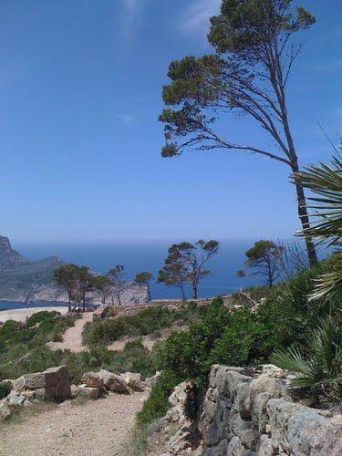 Junto a La Trapa, Dragonera, Mallorca, Spain