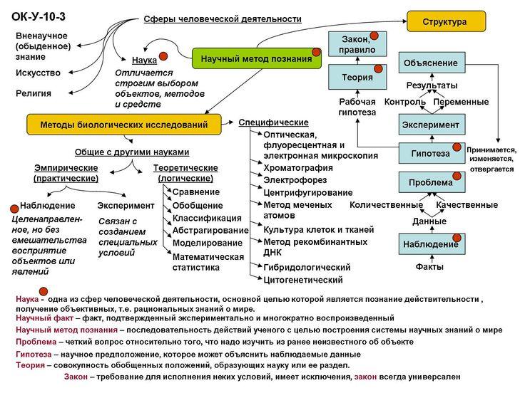 Научный метод познания biologia.sch690.ru