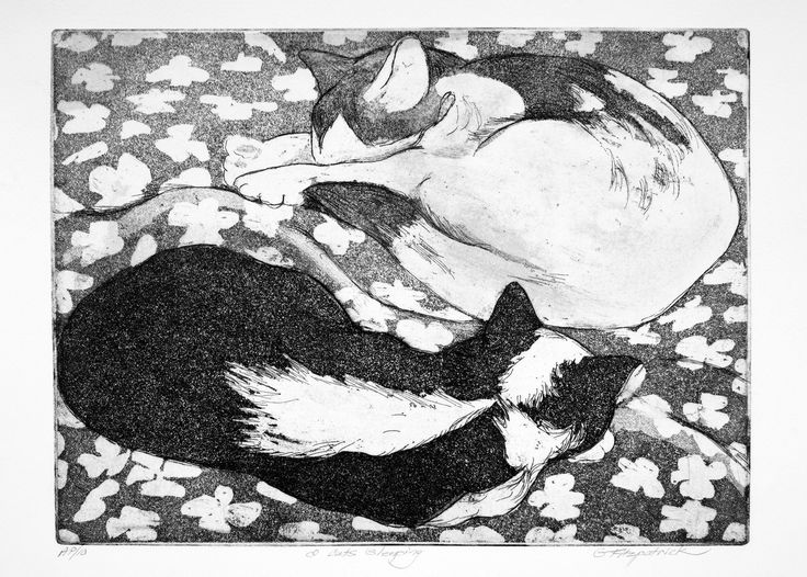 Original Fine Art Etching, 2 cats sleeping by papermaker on Etsy