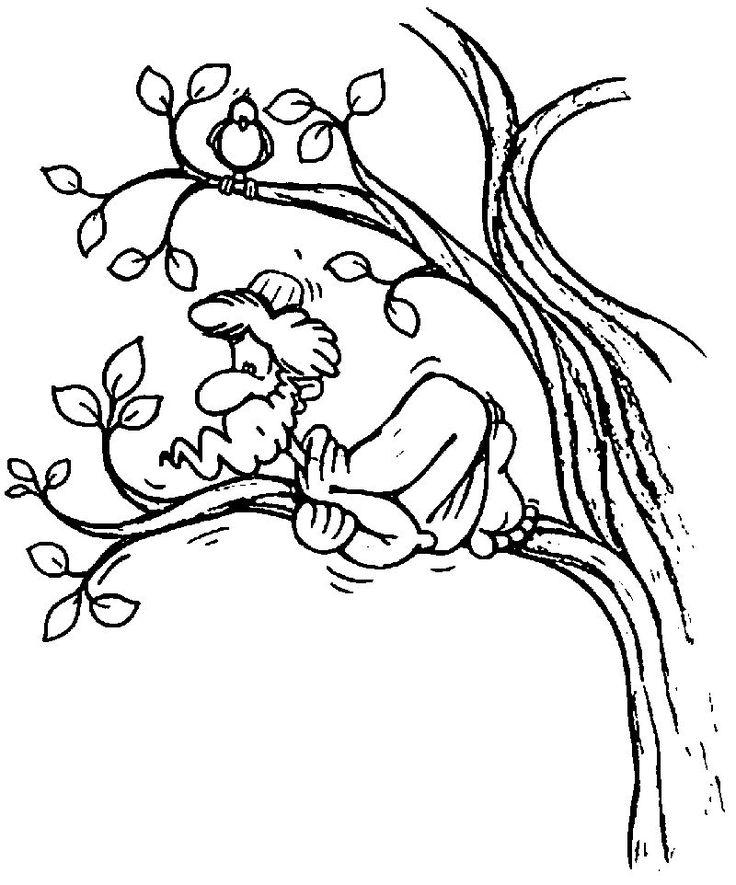 Zacchaeus Jesus Fear Coloring Page