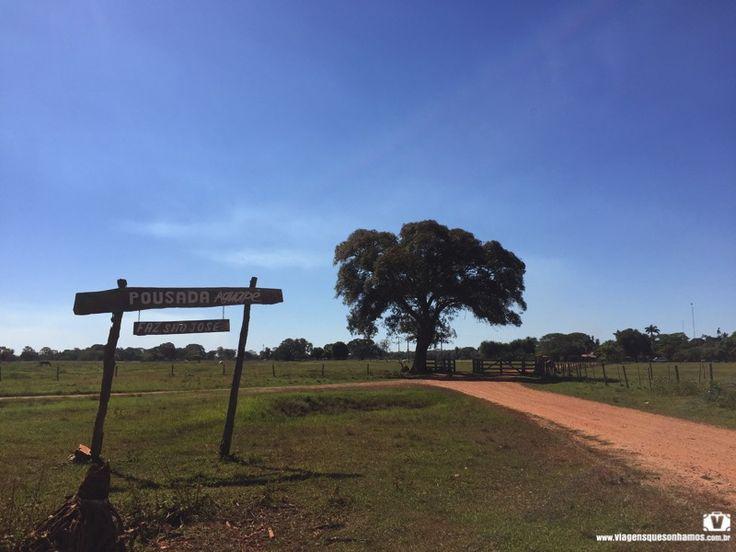 Todos os detalhes de como é ficar hospedado em uma autêntica fazenda pantaneira, na Pousada Aguapé, em Aquidauana, no Mato Grosso do Sul.