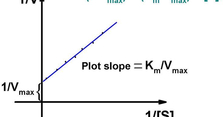 Cómo calcular el Km. Las enzimas son proteínas que catalizan las reacciones bioquímicas. Una enzima interactúa con una molécula, llamada generalmente llamada sustrato, y lo convierte en un producto. La velocidad de la reacción depende de la concentración de sustrato ([S]). Pero, a una cierta concentración, la velocidad alcanza el valor máximo (Vmax). Km es una ...