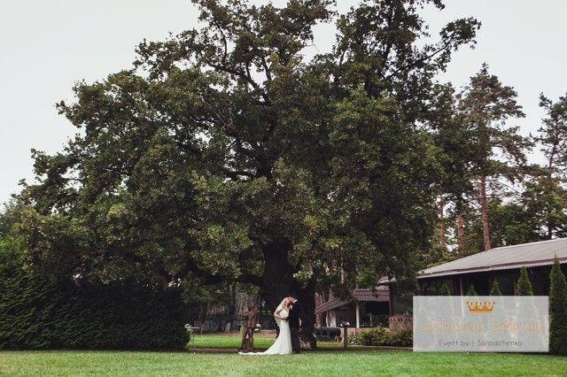 Cамые красивые места для свадьбы в Киеве и области   Свадебная Империя
