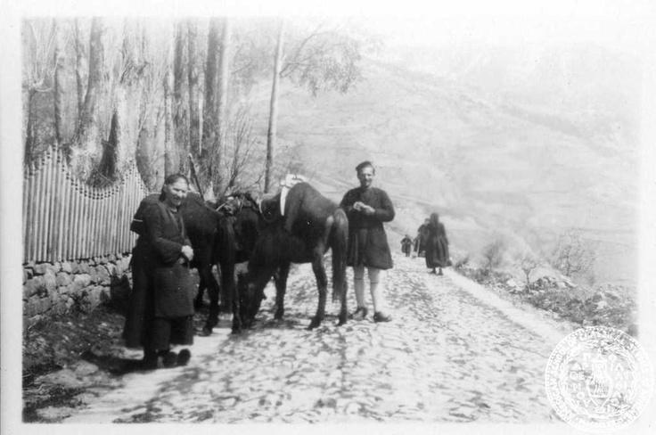 Metsovo, Epirus; 1931; Dorothy Burr Thompson