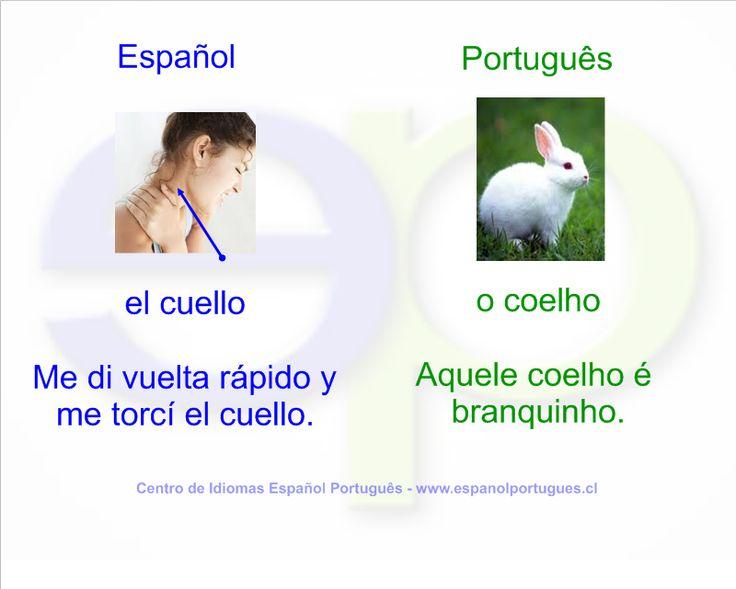 Falso cognado - CUELLO x COELHO