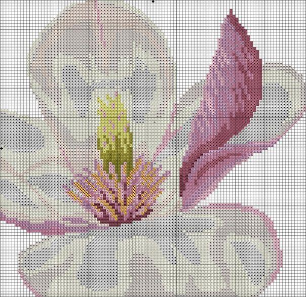 Gallery.ru / Фото #3 - нежная магнолия - irisha-ira / tryptyk magnolia 3/5
