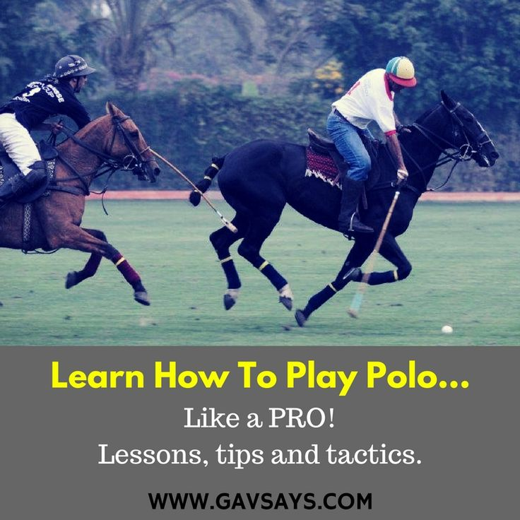 GavSays.com: So you want to learn how to play polo? Or to play it better? Then the following lessons on your grip, swing, shots, and tactics are just for you. Let's take your game to the next level...