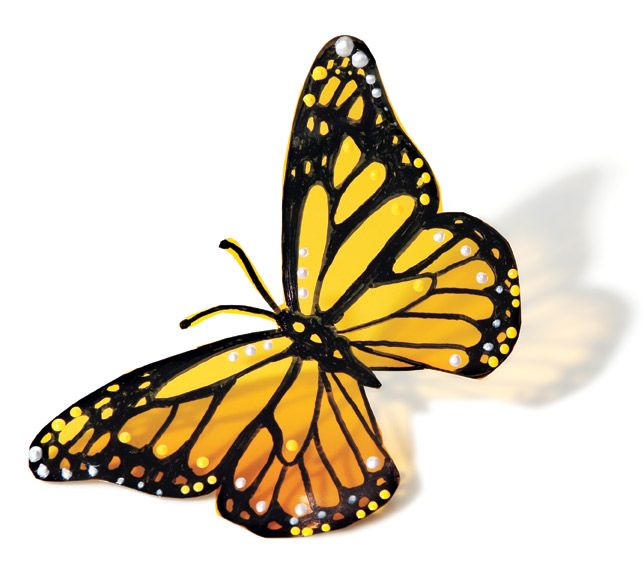 yellow butterfly tattoo | how to make a monarch butterfly you need butterfly template