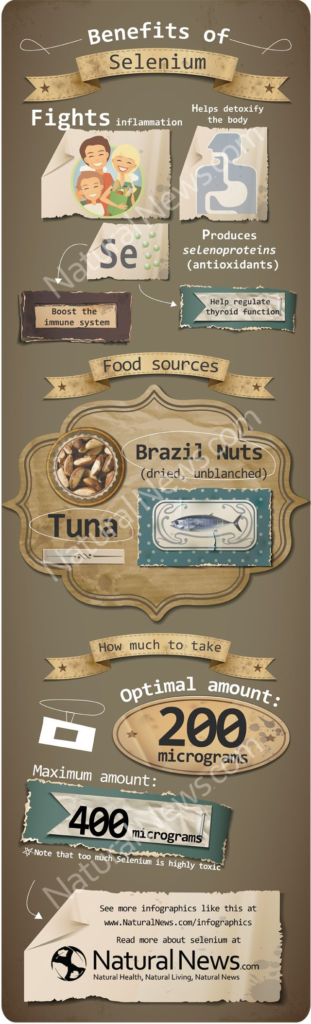Fantastic infographic on selenium, its health benefits, the best food sources and more.