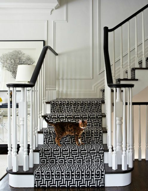 Black and white with graphic stair runner