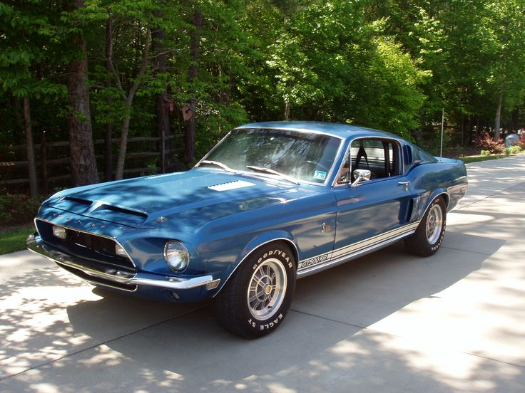 shelby gt500kr king - photo #24