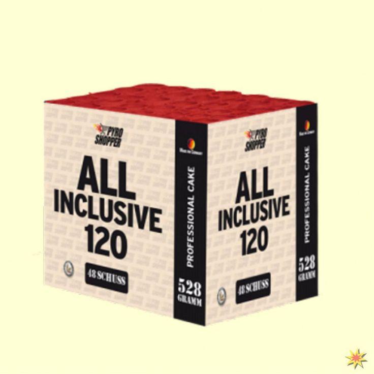 Feuerwerksbatterie All Inclusive 120 Sek.von Lesli 001