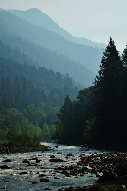 The Animas river and the Weminuche wilderness