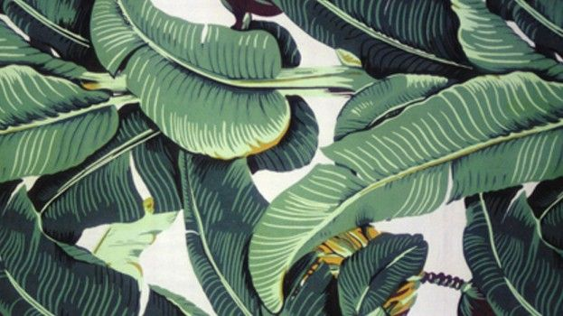 17 best images about wallpaper on pinterest banana leaves temporary