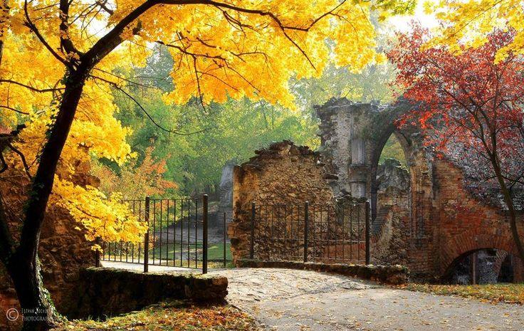 Tata...Angolpark - A nagykiterjedésű parkot Esterházy Ferenc gróf megbízásából Böhm Ferenc 1783-ban létesítette, a 18. század második felében divatossá vált angolkertek mintájára. Az elnevezése is innen származik. Az ország legnagyobb ilyen parkjai közé tartozik.
